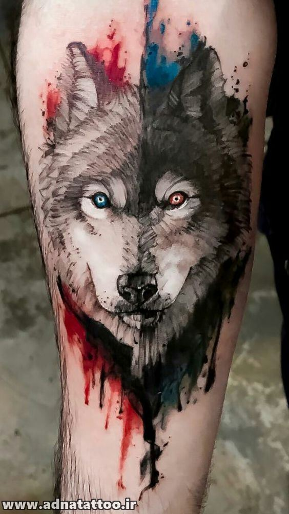 تاتو رنگی گرگ